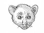 Retro Cartoon Style Drawing Of Head Of An Aye-aye Or Daubentonia Madagascariensis , An Endangered Wi poster