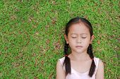 Close Eyes Little Asian Child Girl With Two Ponytail Hair Lying On Green Grass In The Garden. poster