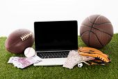 Laptop Near Sports Balls, Baseball Glove, Euro And Dollar Banknotes On Green Grass Isolated On White poster