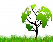 image of global-warming  - Tree with foliage world map - JPG
