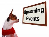 picture of upcoming  - Upcoming Events Sign Shows Future Occasions Schedule For Dogs Site - JPG