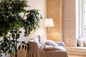 Living Room Home Interior With Sofa, With Wooden Floors And Decorative Plant, Floor Lamp.house Inter poster