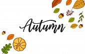Autumn Banner Background With Dried Leaf Decorations. Autumn Ad Leaves Flyer Label. Autumn Design Te poster