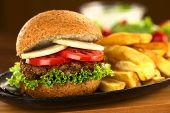 Vegetarian Lentil Burger