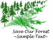 Salvar nuestros bosques