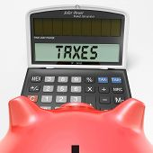 Taxes On Calculator Shows Hmrc Return Due