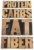 protein, carbs, fat, fiber - dietary components of food - - isolated text in letterpress wood type p