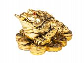 picture of curio  - Chinese Feng Shui Frog with coins symbol of money and wealth - JPG