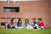 Five casual students sitting on the grass using laptop on campus at college