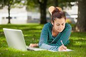 Calm casual student lying on grass taking notes on campus at college