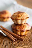 Cinnamon Oat Bran  Muffins