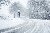 Snowfall on a cury country road