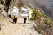 stock photo of heavy bag  - Two sherpa porters carrying heavy sacks in the Himalaya at Everest Base Camp trek Nepal - JPG