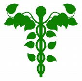 Caduceus Dna Or Holistic Medicine Concept