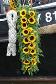 picture of ijs  - Sunflowers hanging on ship - JPG