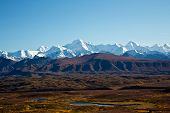 pic of denali national park  - The mountains of Alaska - JPG