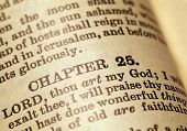 pic of holy-bible  - Close up of a Holy Bible text - JPG