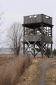 bird-watching tower
