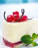 delicious piece of cheesecake decorated with currant