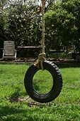 picture of tire swing  - Tire swing in the park - JPG