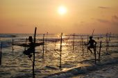 Pole Fishermen, Sri Lanka