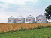 Grain Bin Canisters