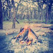 Campfire In Forest Instagram Style