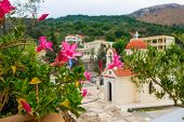The Greek Orthodox monastery in the colors of bougainvillea