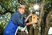image of nesting box  - A Man hanging a bird nest Box in a tree - JPG