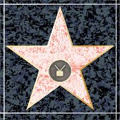 ������, ������: Hollywood TV Walk Of Fame