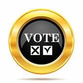 Vote Icon