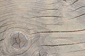 Spruce Wood Floor Detail