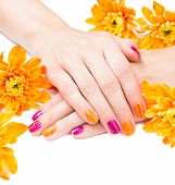 Women's hands with bright manicure and flowers around