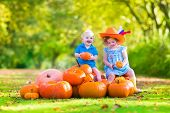 foto of baby cowboy  - Happy children at pumpking patch during Halloween little girl in a blue dress boots and cowboy hat and baby boy having fun together trick or treating on a sunny autumn day - JPG