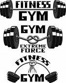 Vector set, gym