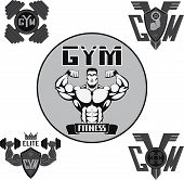 Vector set, gym