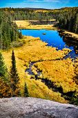stock photo of ponds  - A high angle shot of a pond with a beaver lodge - JPG