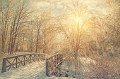 picture of covered bridge  - Ice covered park landscape of frozen trees and a bridge with the tree branches sparkling in the sunlight after an ice storm - JPG
