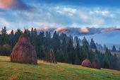 stock photo of haystack  - alone haystack in foggy mountain - JPG