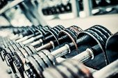 stock photo of dumbbell  - Sports dumbbells in modern sports club - JPG