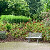 stock photo of banquette  - bench in a beautiful park - JPG