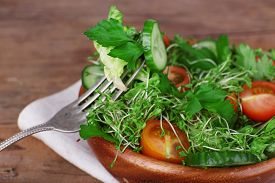 stock photo of cucumbers  - Cress salad with sliced cucumber - JPG