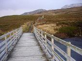 Scottish Bridge