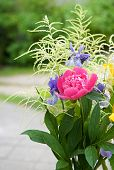 stock photo of png  - Bouquet of various colors wild flowers on summer time in blurry background - JPG