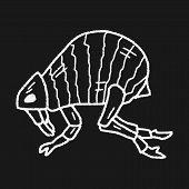image of lice  - Flea Doodle - JPG