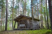 image of house woods  - Old rustic wooden cabin in the woods - JPG