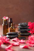 image of azalea  - essential oil azalea flowers black massage stones - JPG