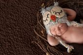 picture of sleeping  - Three week old smiling newborn baby boy wearing a crocheted owl hat and sleeping on his back in a nest - JPG