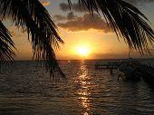 Belize Sunshine