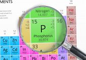 Постер, плакат: Phosphorus Element Of Mendeleev Periodic Table Magnified With